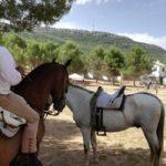 Herencia acoge la final de la Tercera Liga Social de Equitación 33