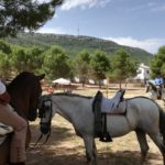 Herencia acoge la final de la Tercera Liga Social de Equitación 31