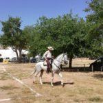 Herencia acoge la final de la Tercera Liga Social de Equitación 29