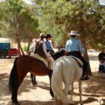 Herencia acoge la final de la Tercera Liga Social de Equitación 24