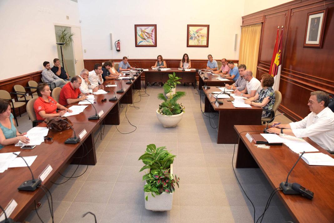 20190802 Pleno Extra Comsermancha 1068x712 - Concepción Rodríguez será miembro de la comisión de Gobierno y Hacienda de Comsermancha