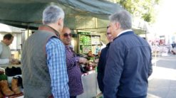 Campa%C3%B1a preelectoral partido popular herencia8 247x138 - Encuentro comarcal del Partido Popular con Paco Ñúñez en Herencia