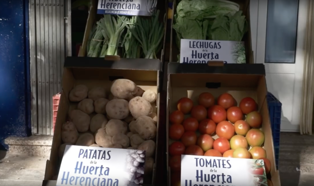 Los hortelanos de Herencia reparte a domicilio los productos de su afamada huerta 4