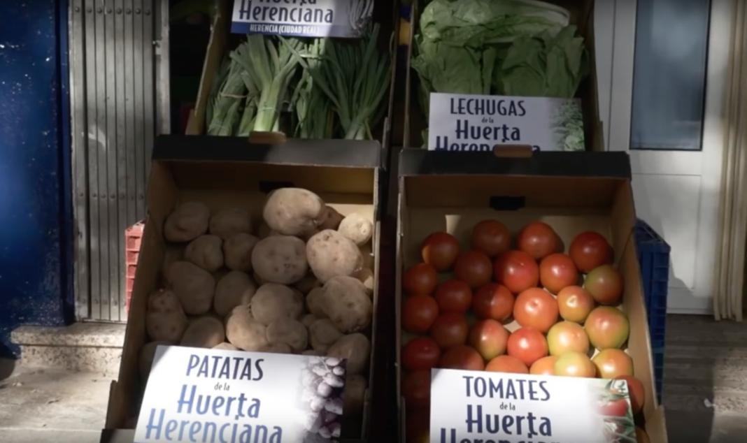 Huerta de Herencia 1068x634 - Los hortelanos de Herencia reparte a domicilio los productos de su afamada huerta