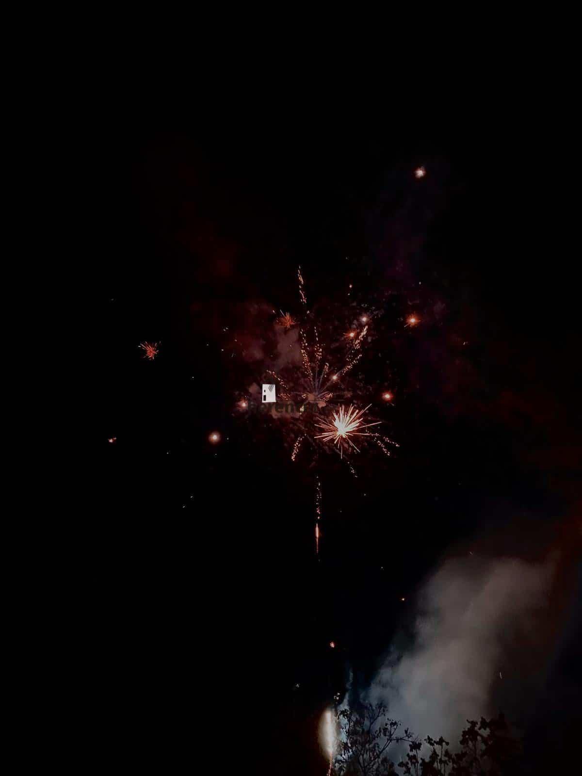 Viernes de Prisillas 2020 del Carnaval en imágenes 98