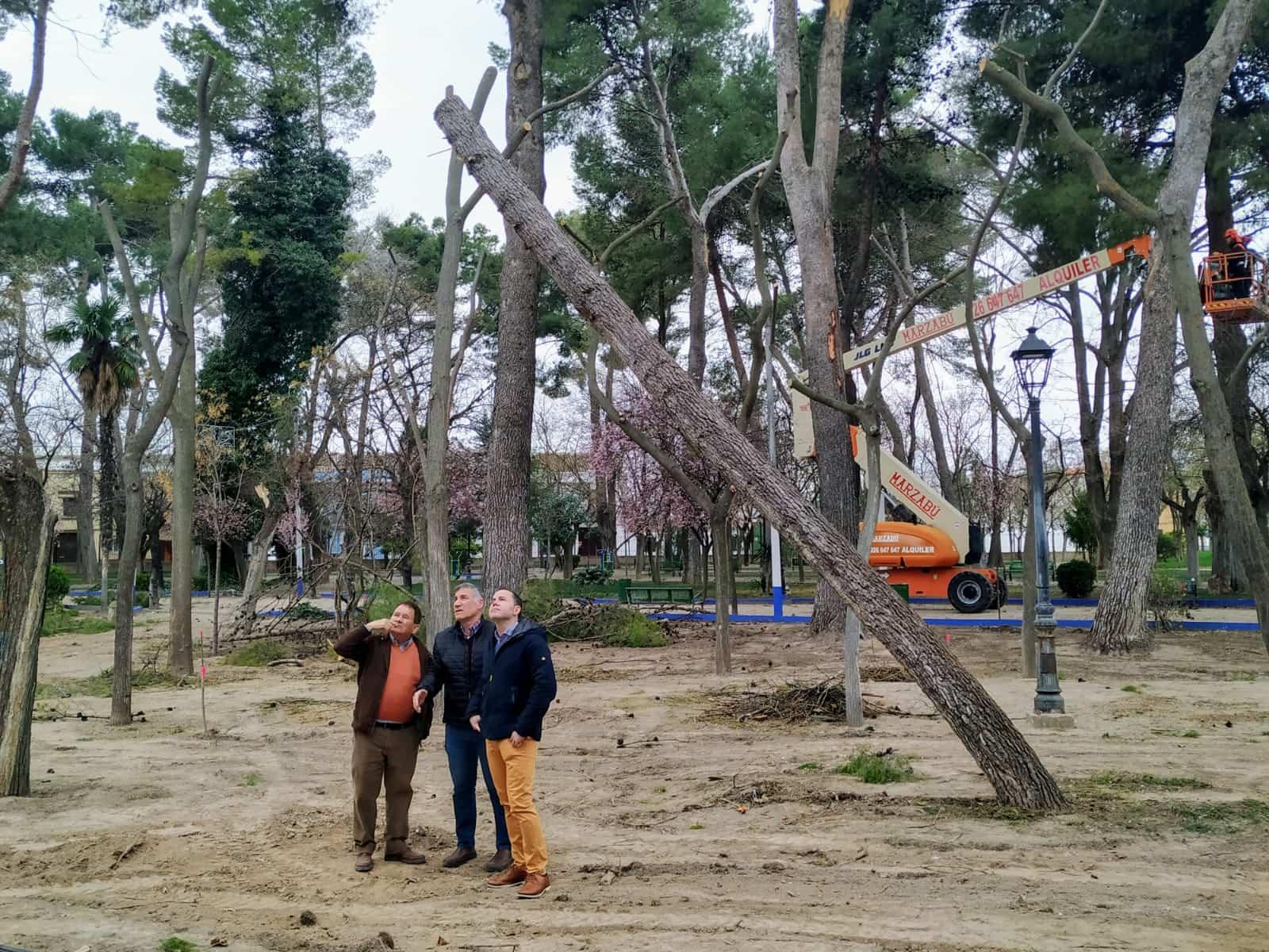 Nueva renovación y acondicionamiento del Parque Municipal de Herencia 5