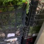 Hortelanos de Herencia donan productos de sus huertas para alimentar a los sanitarios del hospital Mancha-Centro 6