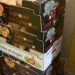 Hortelanos de Herencia donan productos de sus huertas para alimentar a los sanitarios del hospital Mancha-Centro 12