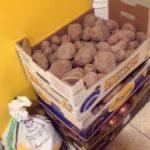 Hortelanos de Herencia donan productos de sus huertas para alimentar a los sanitarios del hospital Mancha-Centro 11
