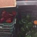 Hortelanos de Herencia donan productos de sus huertas para alimentar a los sanitarios del hospital Mancha-Centro 8