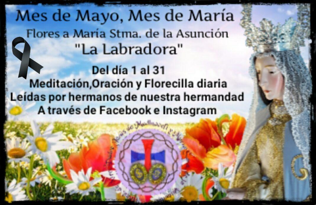 Flores a María Santísima de la Asunción La Labradora 1068x693 - La hermandad de Medinaceli y la Asunción celebra todos los días de mayo las flores a María