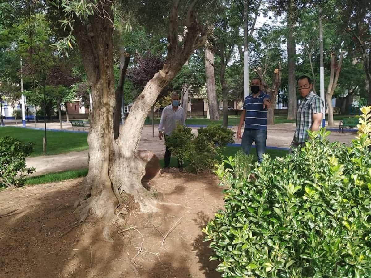mantenimiento parque municipal herencia 2 - El Parque Municipal de Herencia finaliza sus obras de remodelación