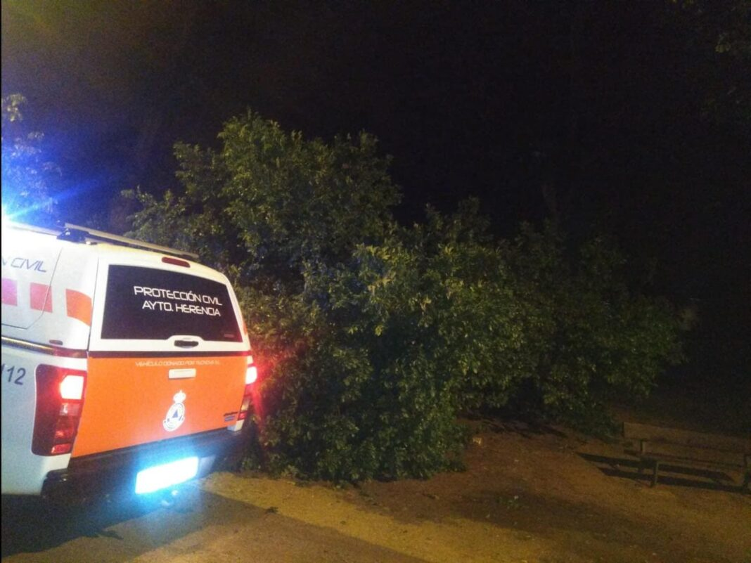 proteccion civil herencia ramas arboles caidas 1 1068x801 - Ramas caídas en Herencia por la alerta naranja meteorológica