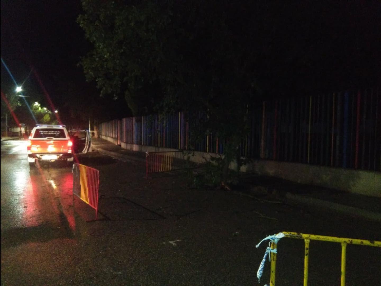 proteccion civil herencia ramas arboles caidas 2 - Ramas caídas en Herencia por la alerta naranja meteorológica