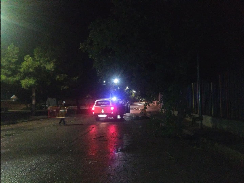 proteccion civil herencia ramas arboles caidas 4 - Ramas caídas en Herencia por la alerta naranja meteorológica