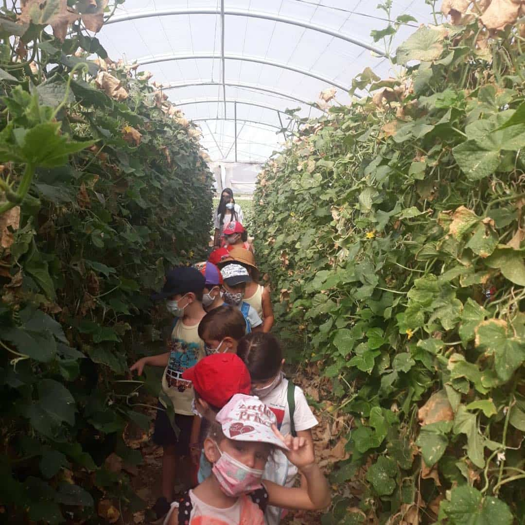 Visita del Taller Multideportivo a la huerta herenciana 18
