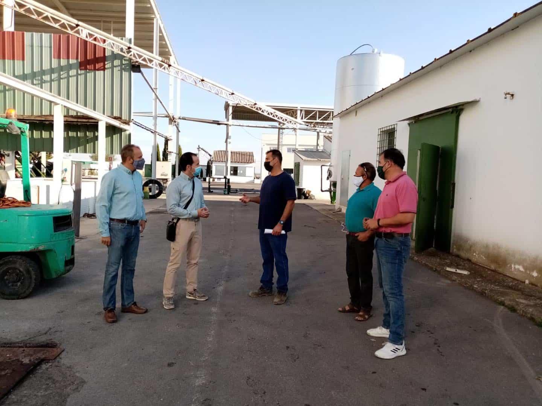 visita a la cooperativa La Encarnacion Grupo Montes Norte de Herencia1 - Recta final de la campaña de vendimia en Herencia