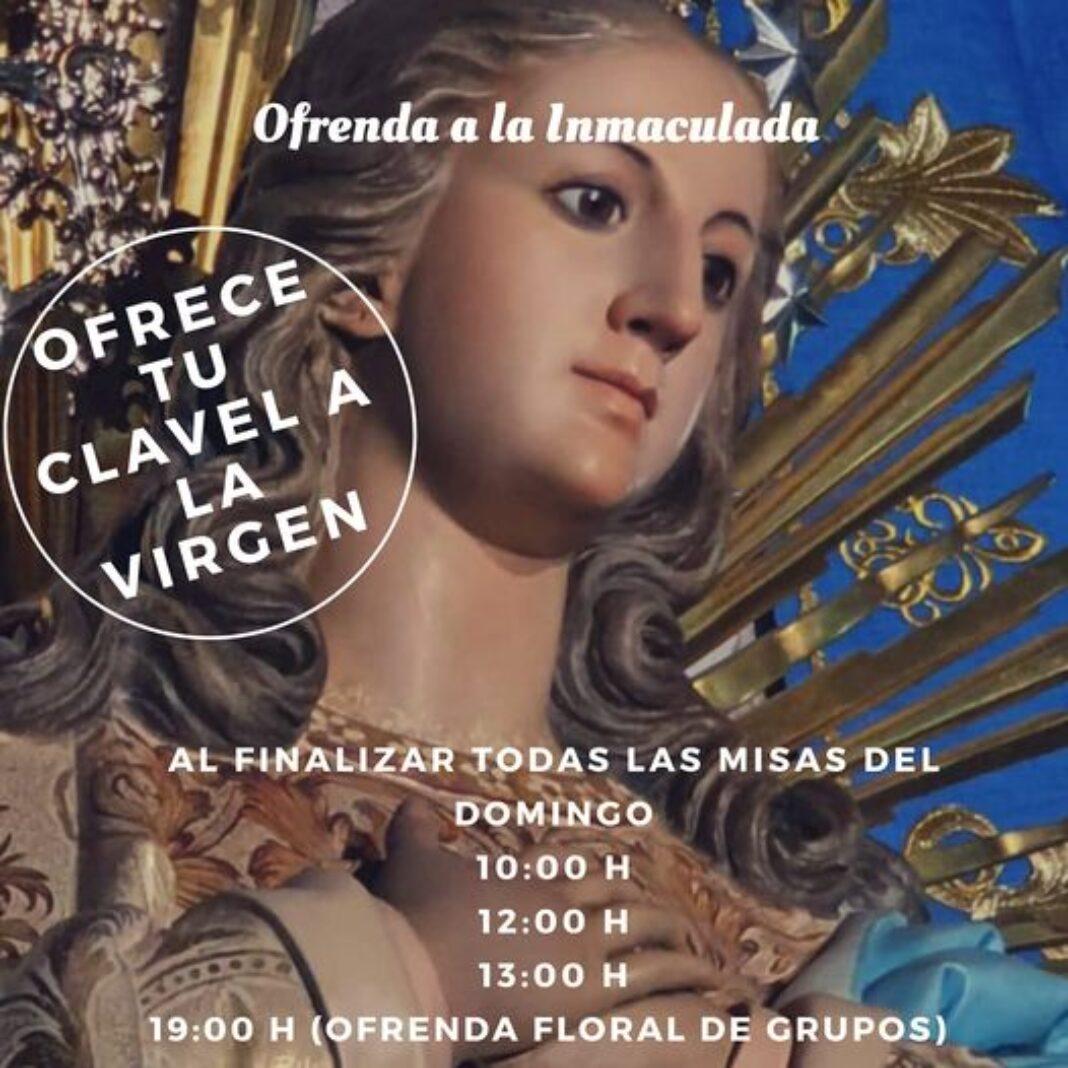 Ofrenda floral a la Inmaculada Concepción 1