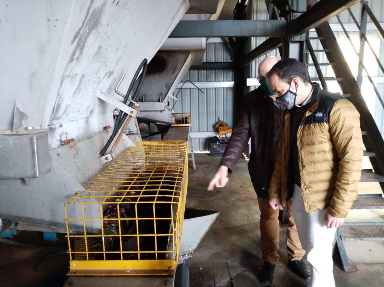Visita a las instalaciones de la almazara Hercoliva en Herencia 16