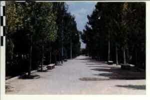 La fototeca municipal de Herencia disponible en Internet 79