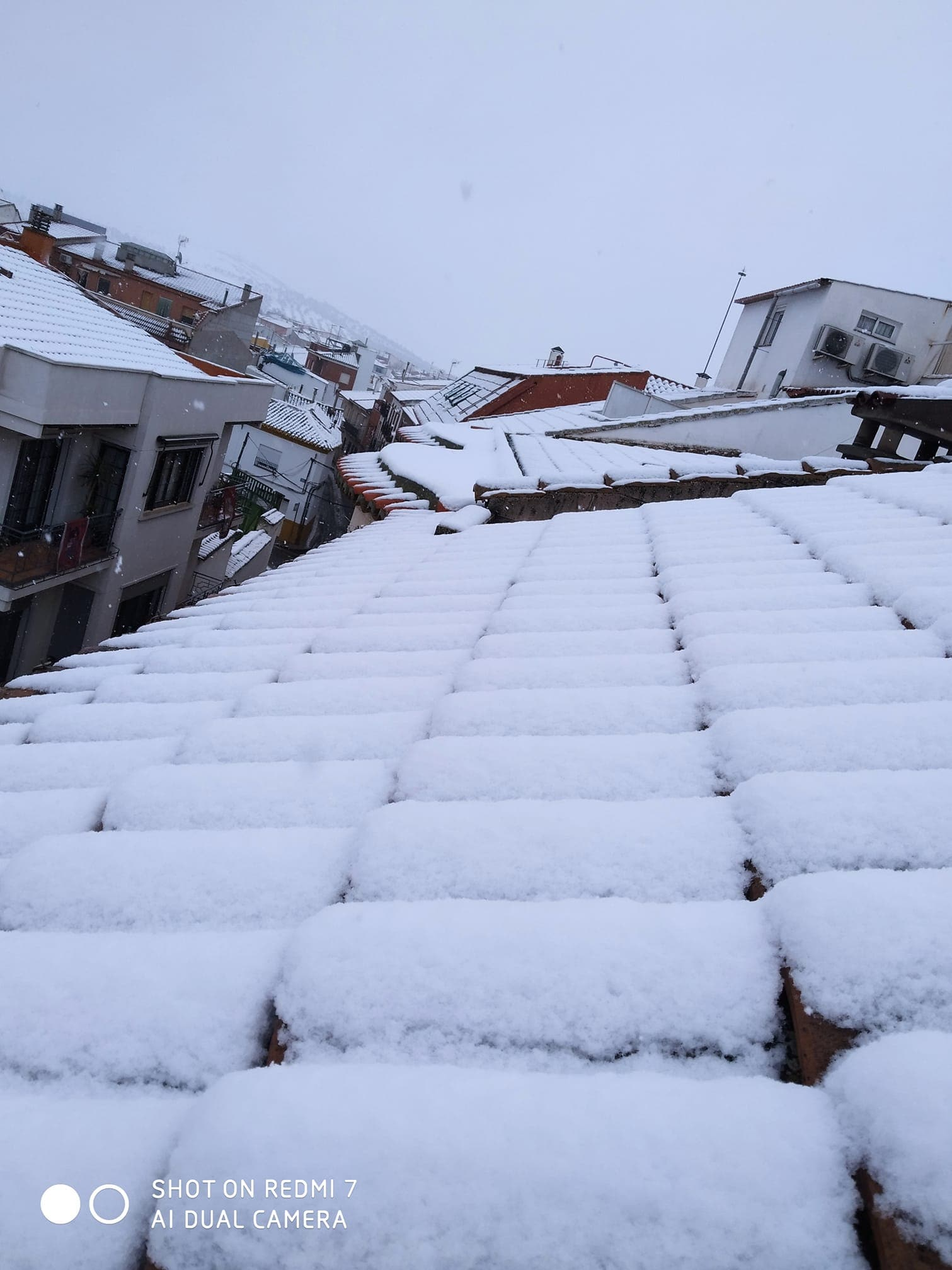 Las nevadas llegan Herencia y a toda Castilla-La Mancha (actualizado) 96