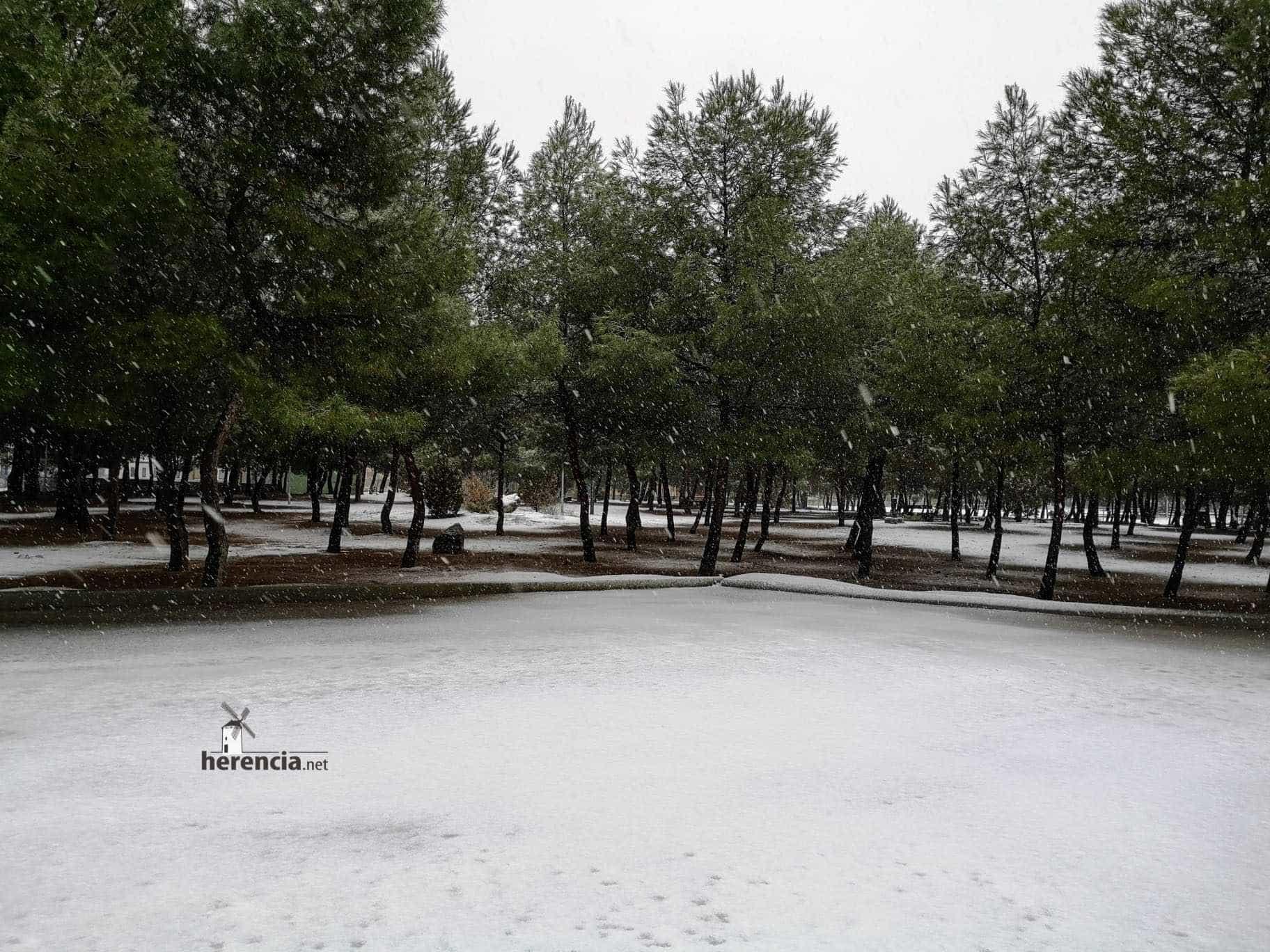 Las nevadas llegan Herencia y a toda Castilla-La Mancha (actualizado) 101