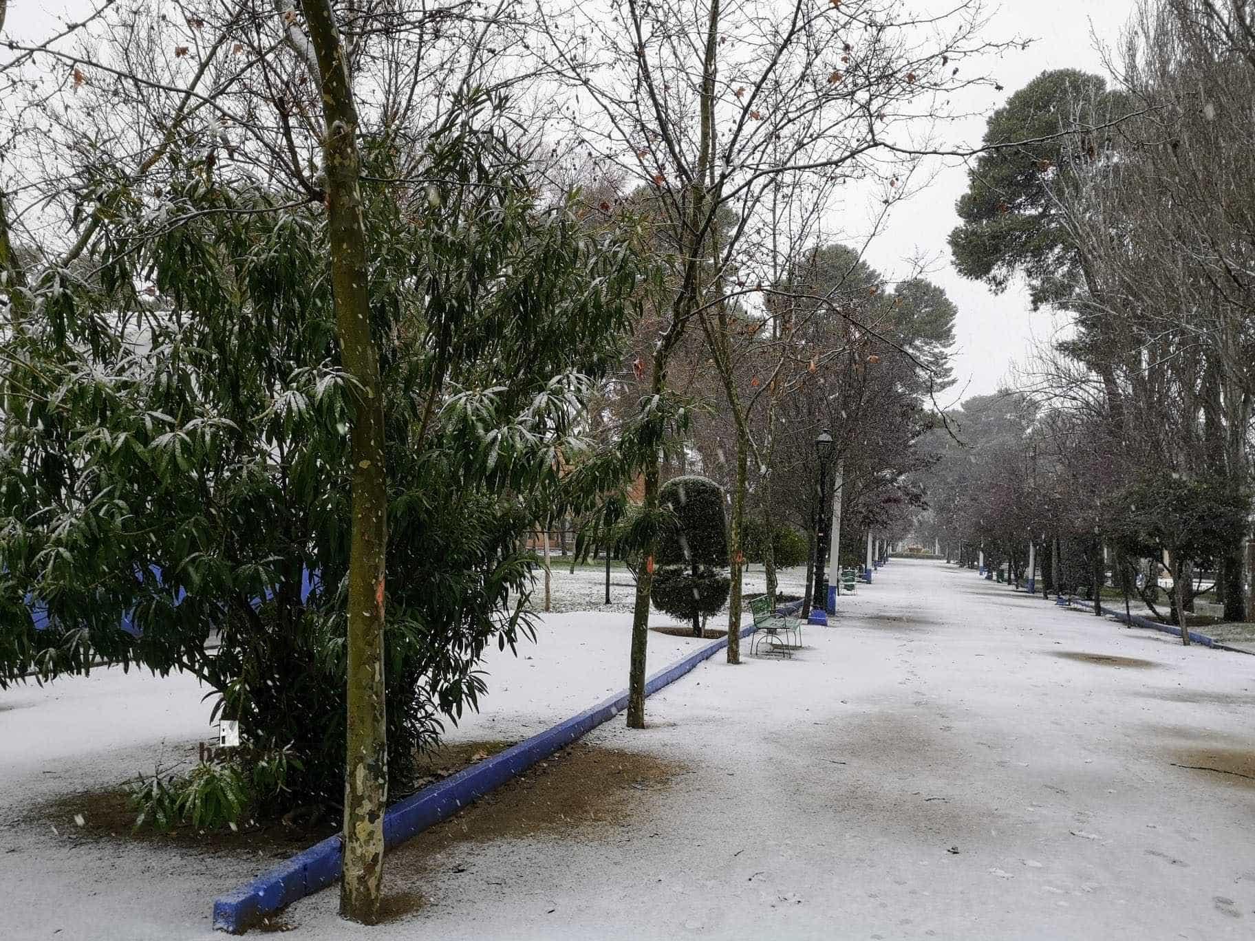Las nevadas llegan Herencia y a toda Castilla-La Mancha (actualizado) 113