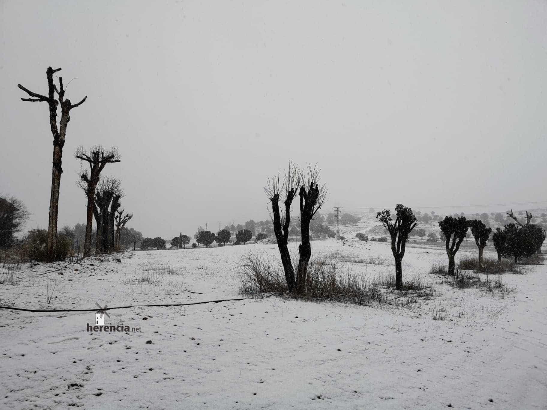 Las nevadas llegan Herencia y a toda Castilla-La Mancha (actualizado) 102