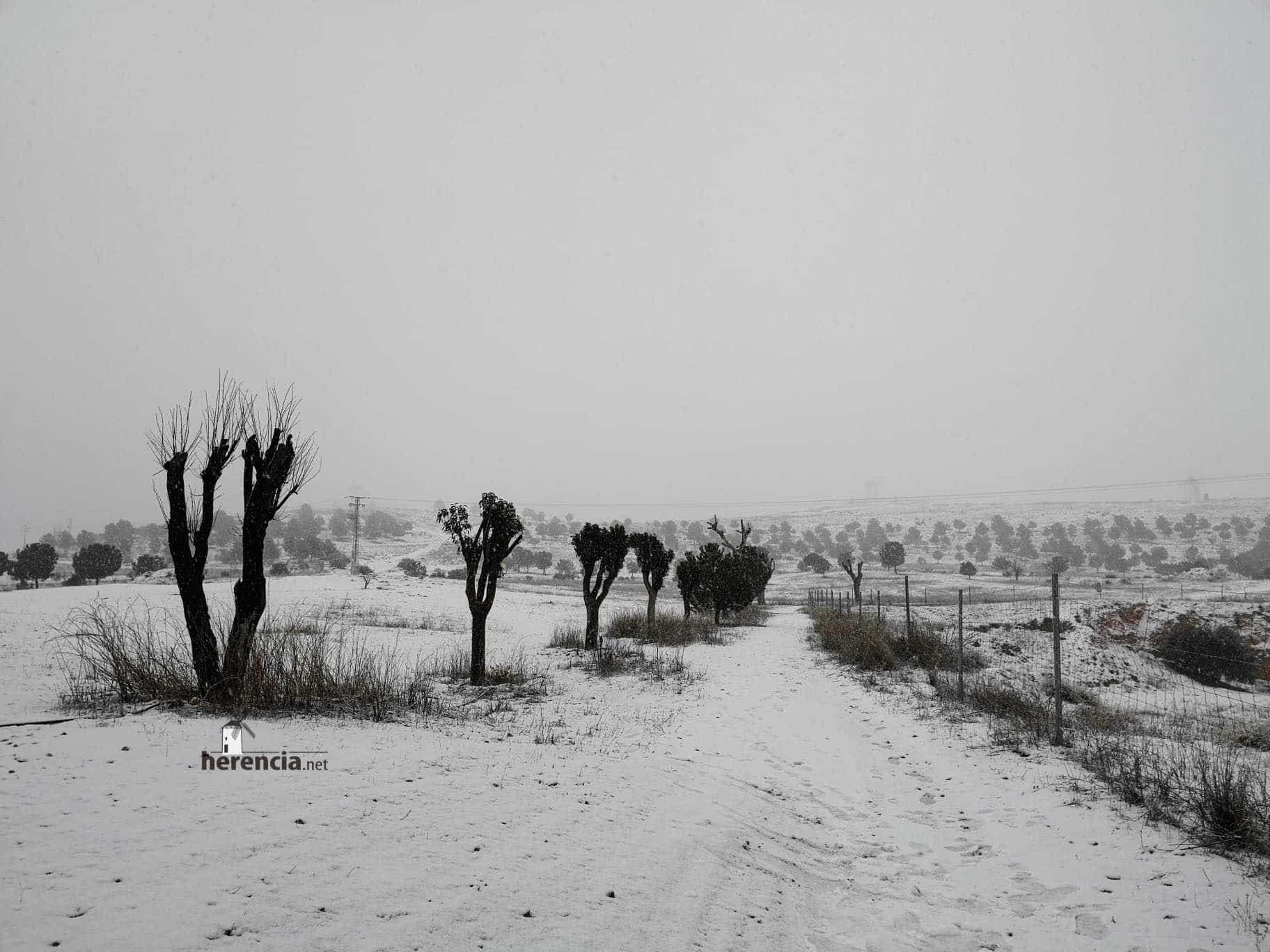 Las nevadas llegan Herencia y a toda Castilla-La Mancha (actualizado) 103