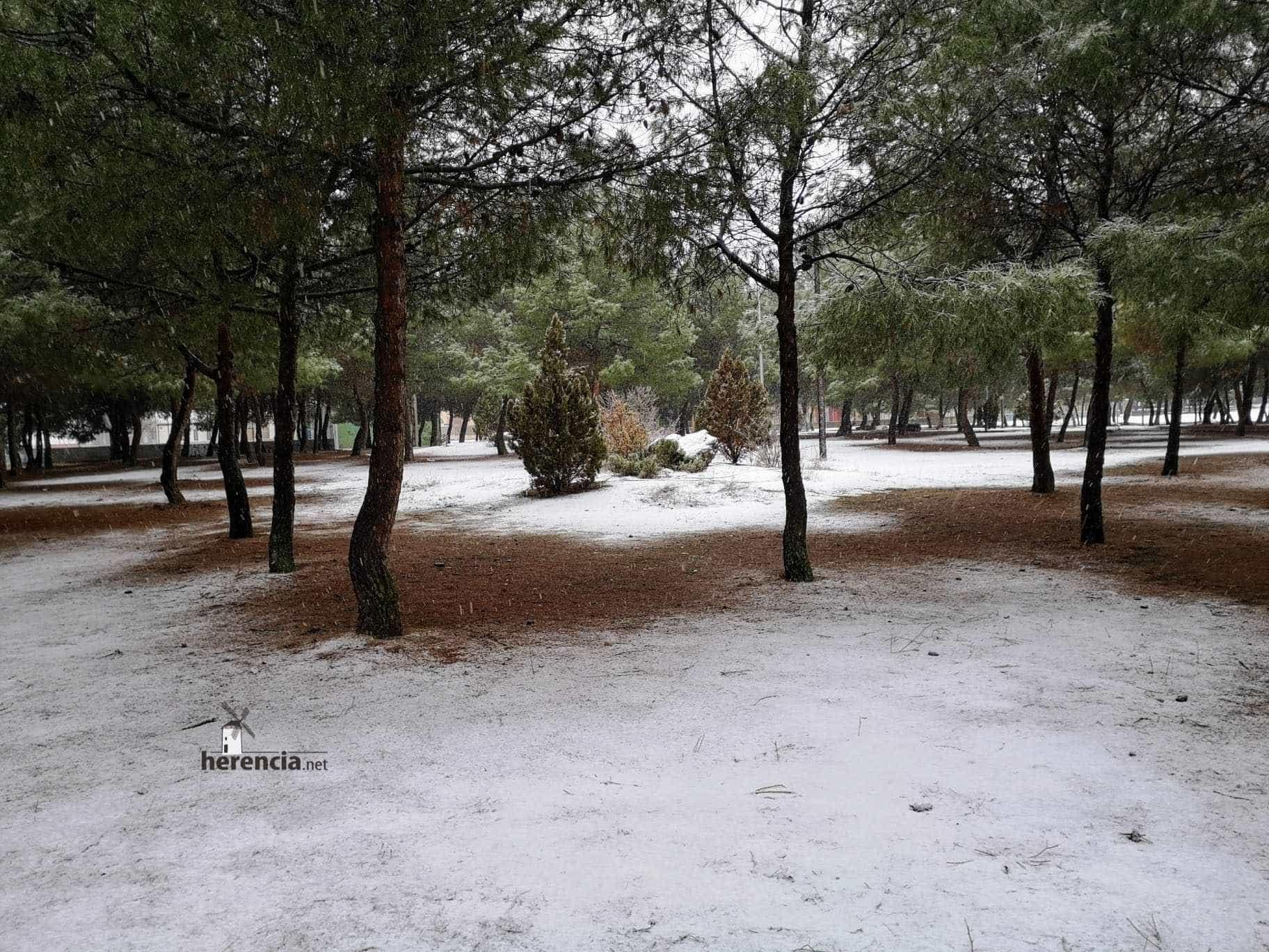 Las nevadas llegan Herencia y a toda Castilla-La Mancha (actualizado) 104