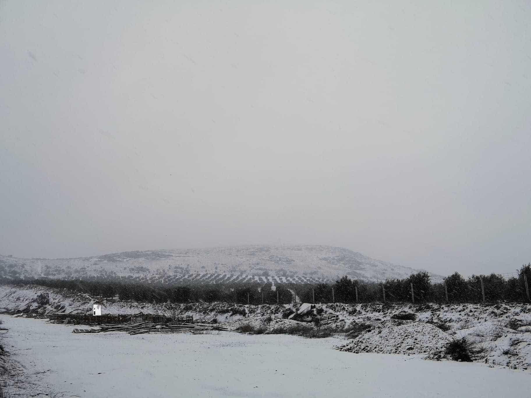 Las nevadas llegan Herencia y a toda Castilla-La Mancha (actualizado) 105