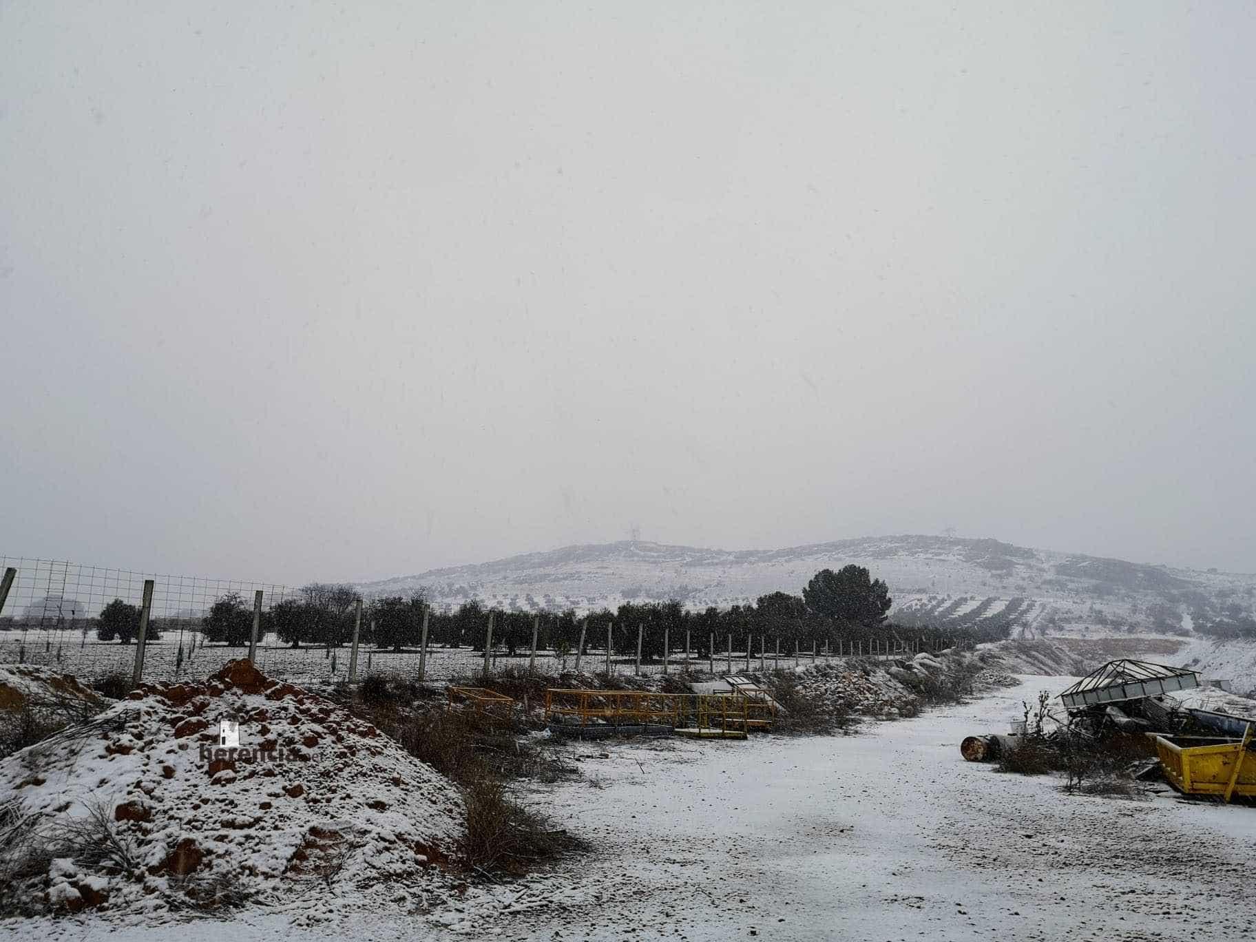 Las nevadas llegan Herencia y a toda Castilla-La Mancha (actualizado) 106