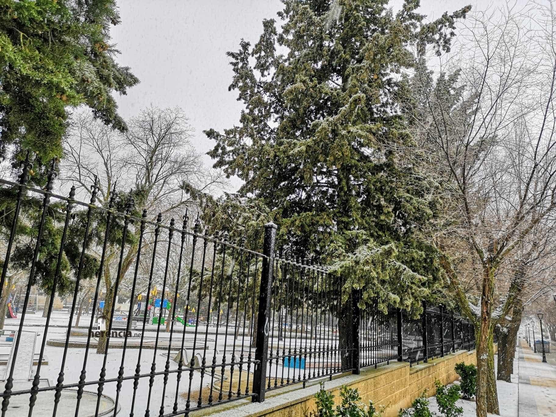 Las nevadas llegan Herencia y a toda Castilla-La Mancha (actualizado) 109