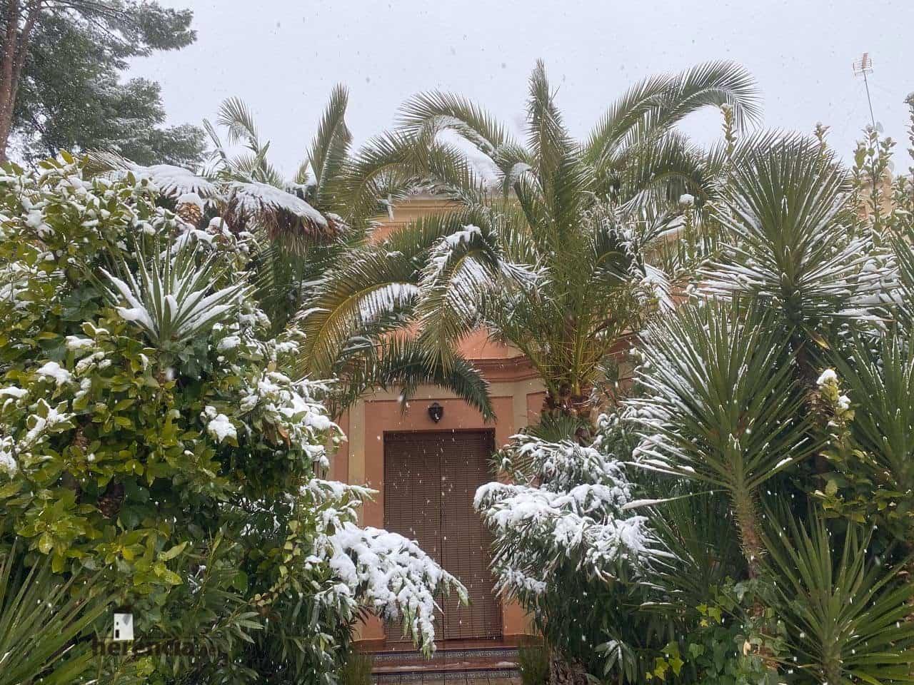 Más fotografías de las nieves de 2021 en Herencia 127