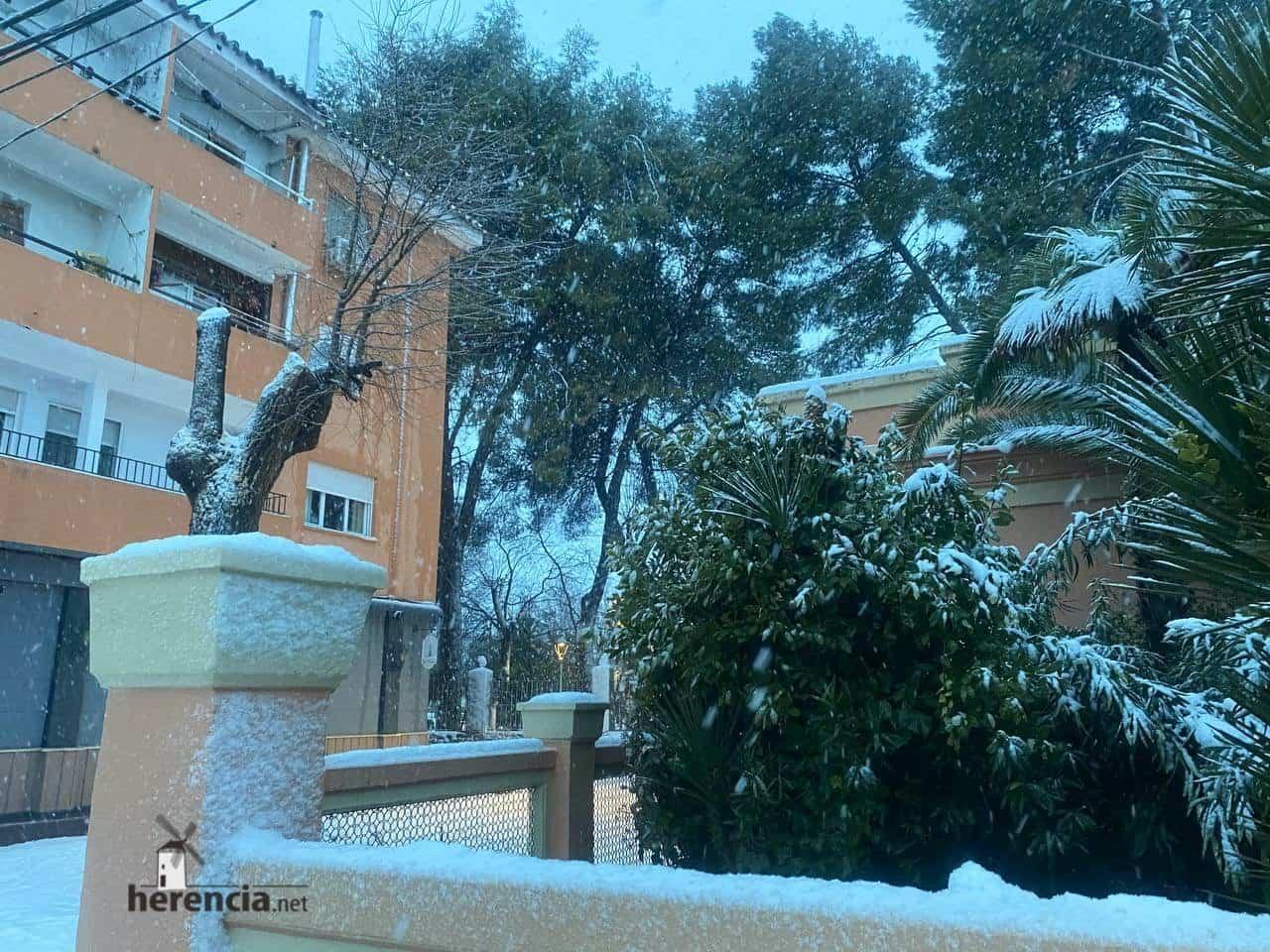 Más fotografías de las nieves de 2021 en Herencia 133