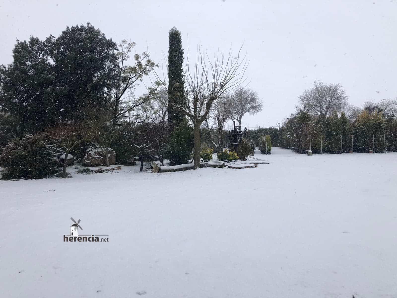 Las nevadas llegan Herencia y a toda Castilla-La Mancha (actualizado) 116