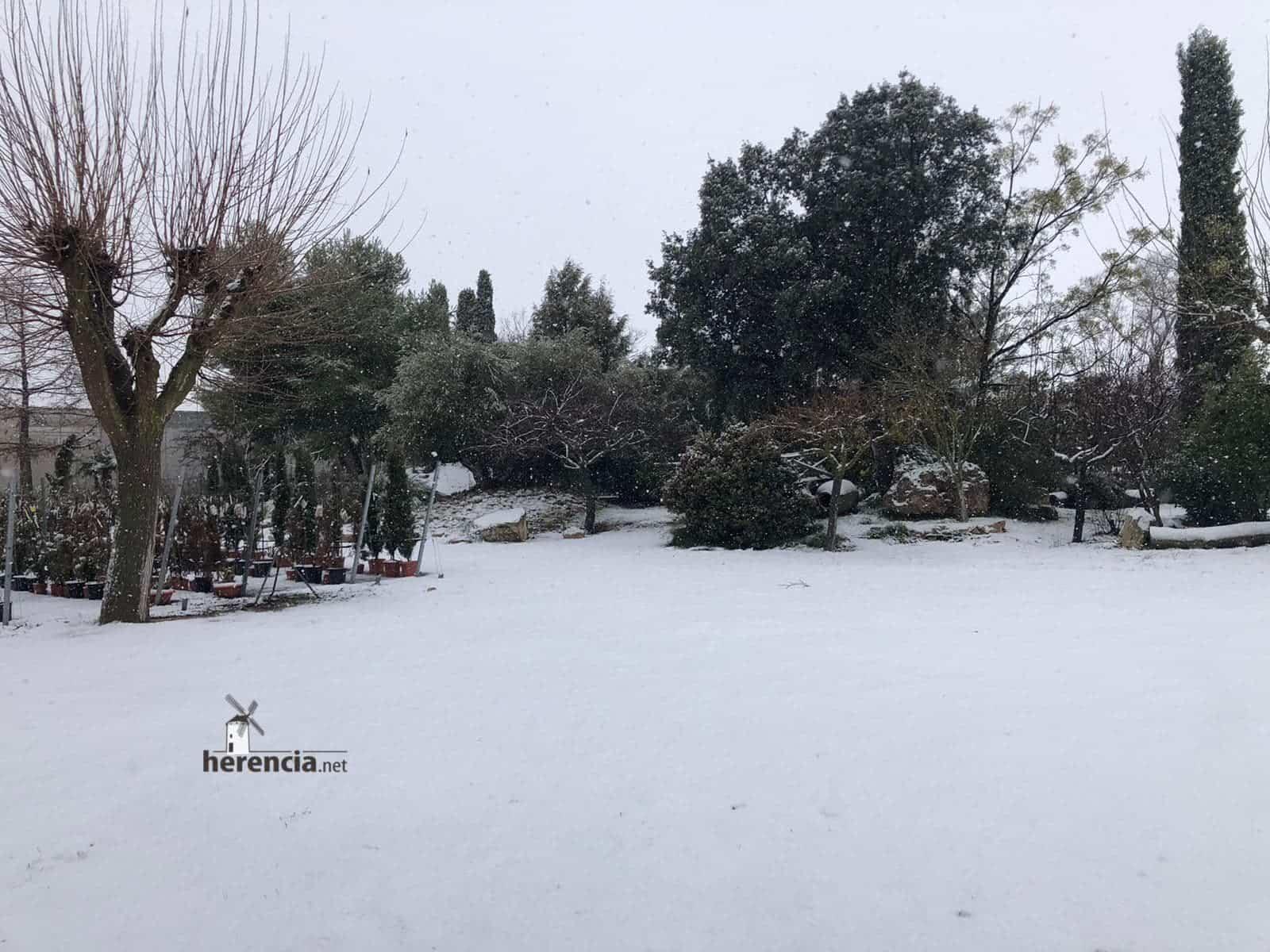 Las nevadas llegan Herencia y a toda Castilla-La Mancha (actualizado) 117