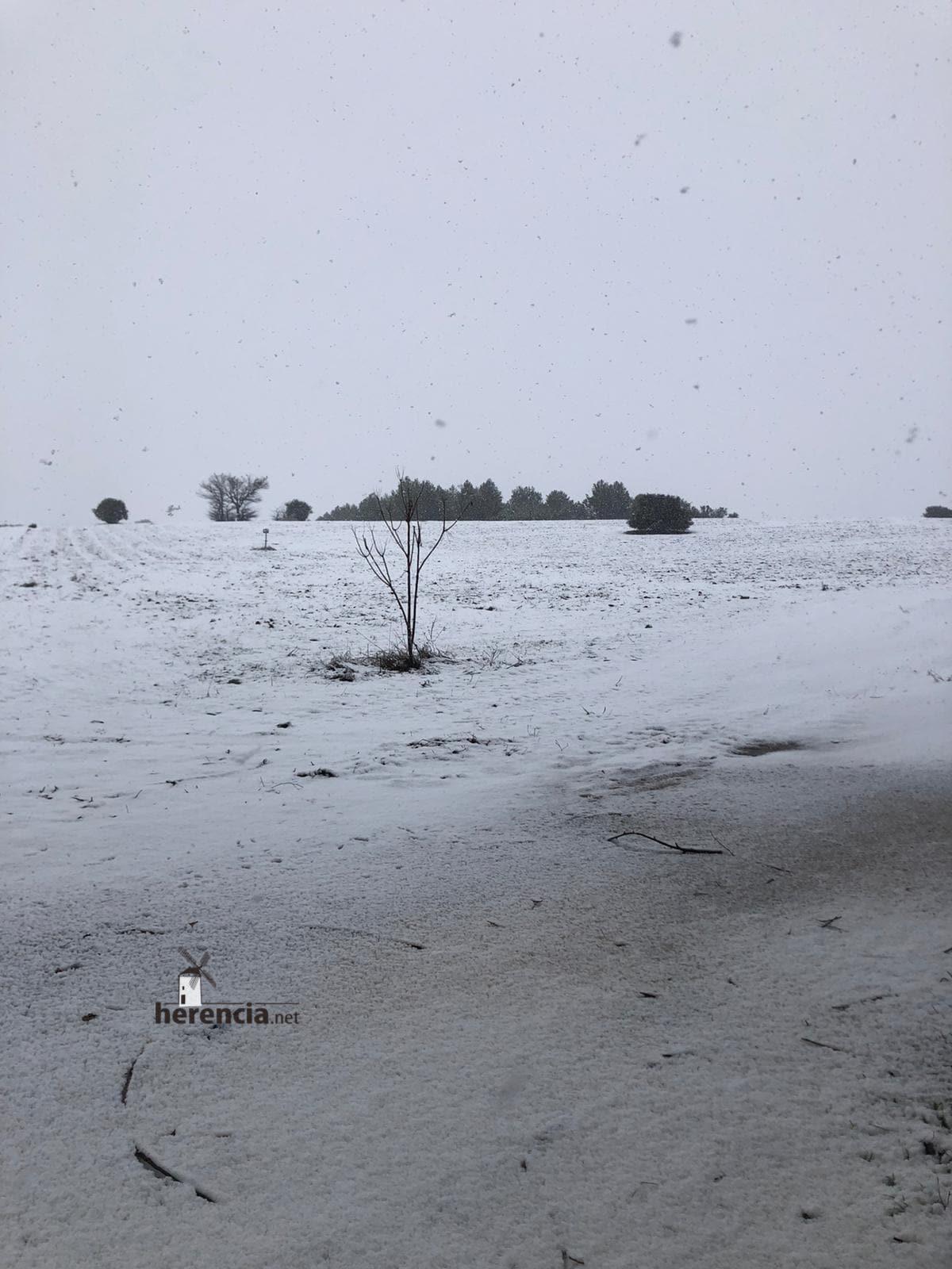Las nevadas llegan Herencia y a toda Castilla-La Mancha (actualizado) 120