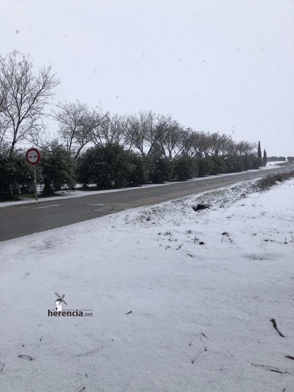 Las nevadas llegan Herencia y a toda Castilla-La Mancha (actualizado) 121