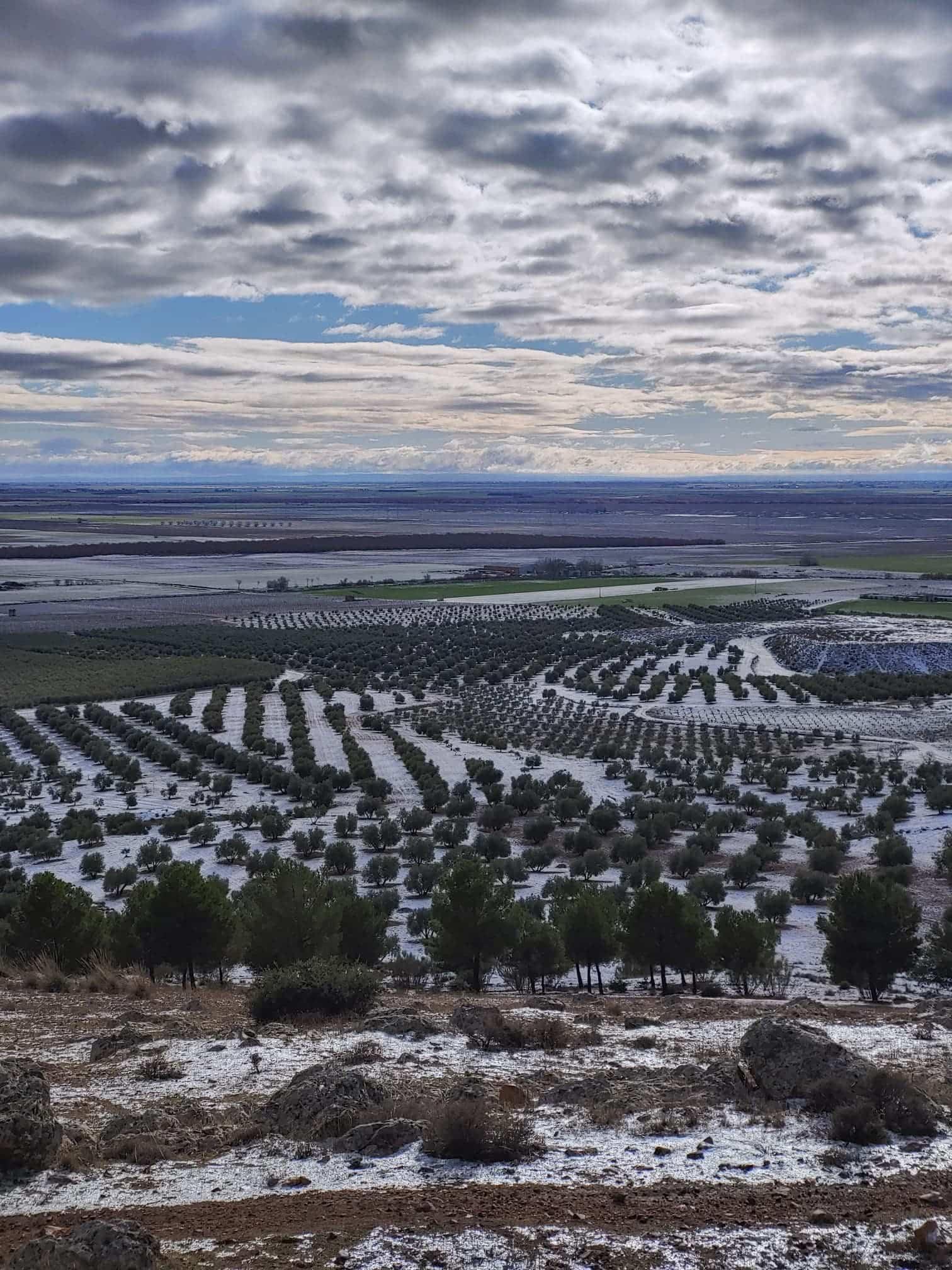 Castilla-La Mancha suspende las clases hasta el próximo lunes ante la previsión de fuertes nevadas 17