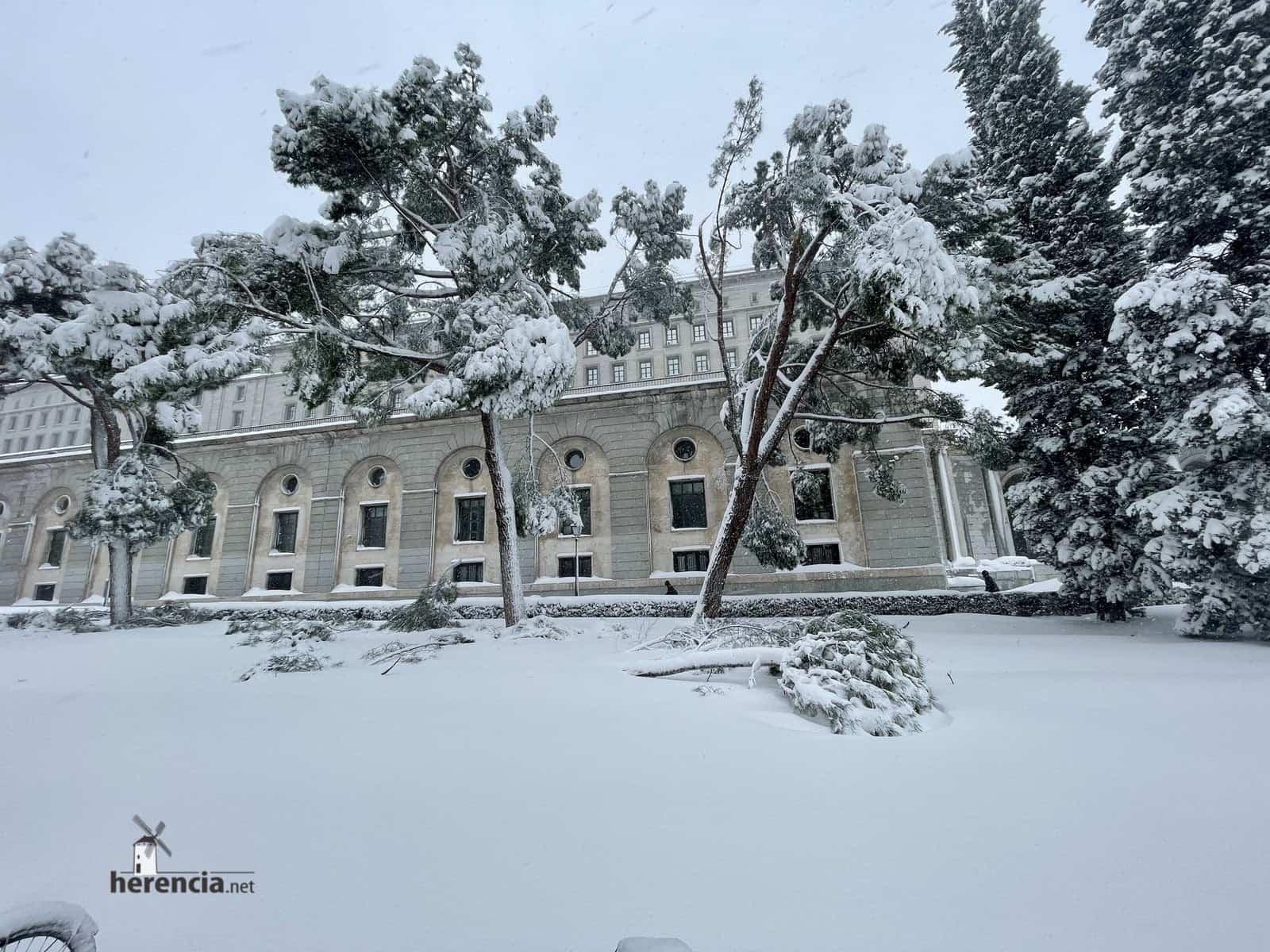 Más fotografías de las nieves de 2021 en Herencia 177