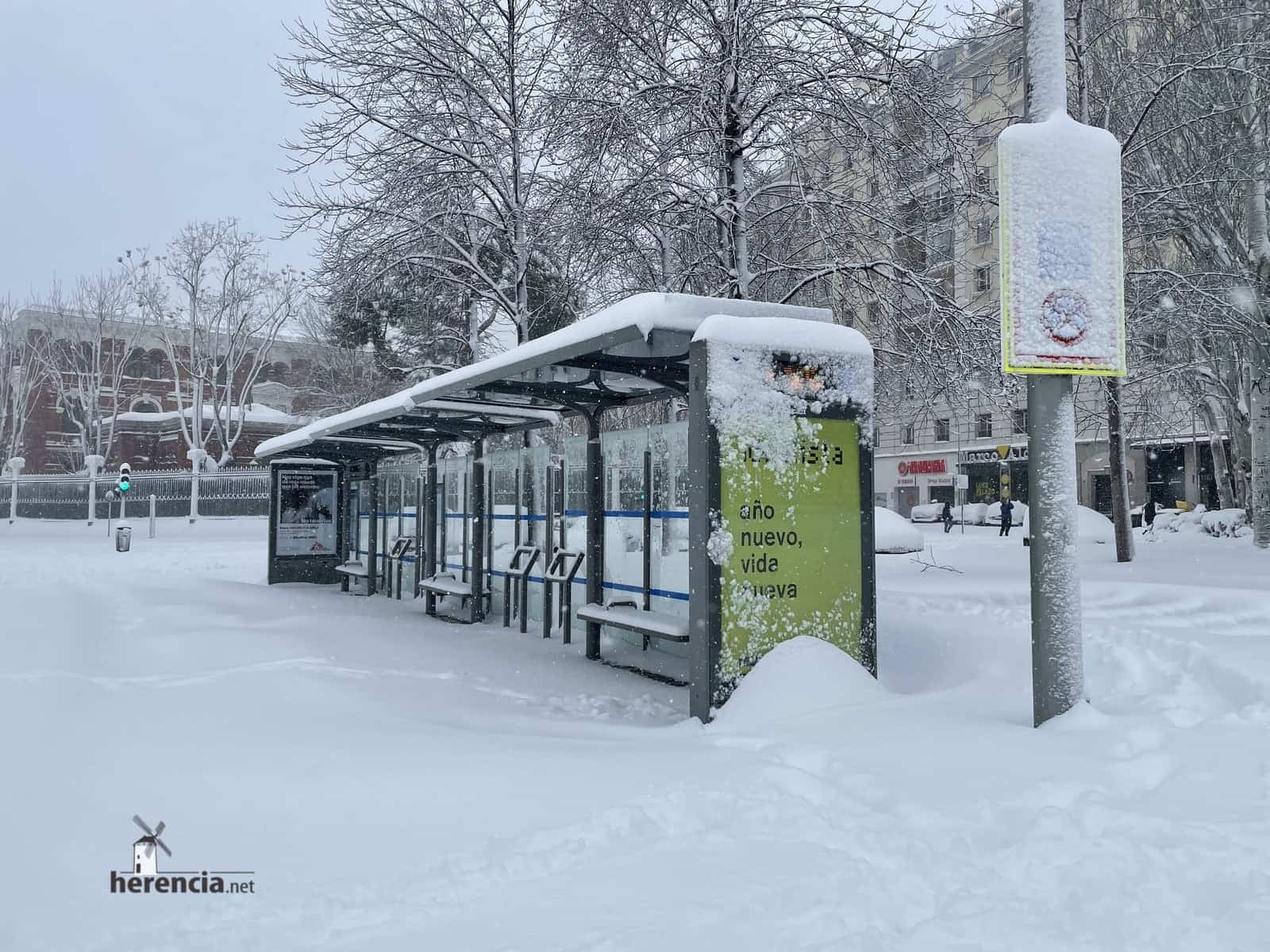 Más fotografías de las nieves de 2021 en Herencia 172