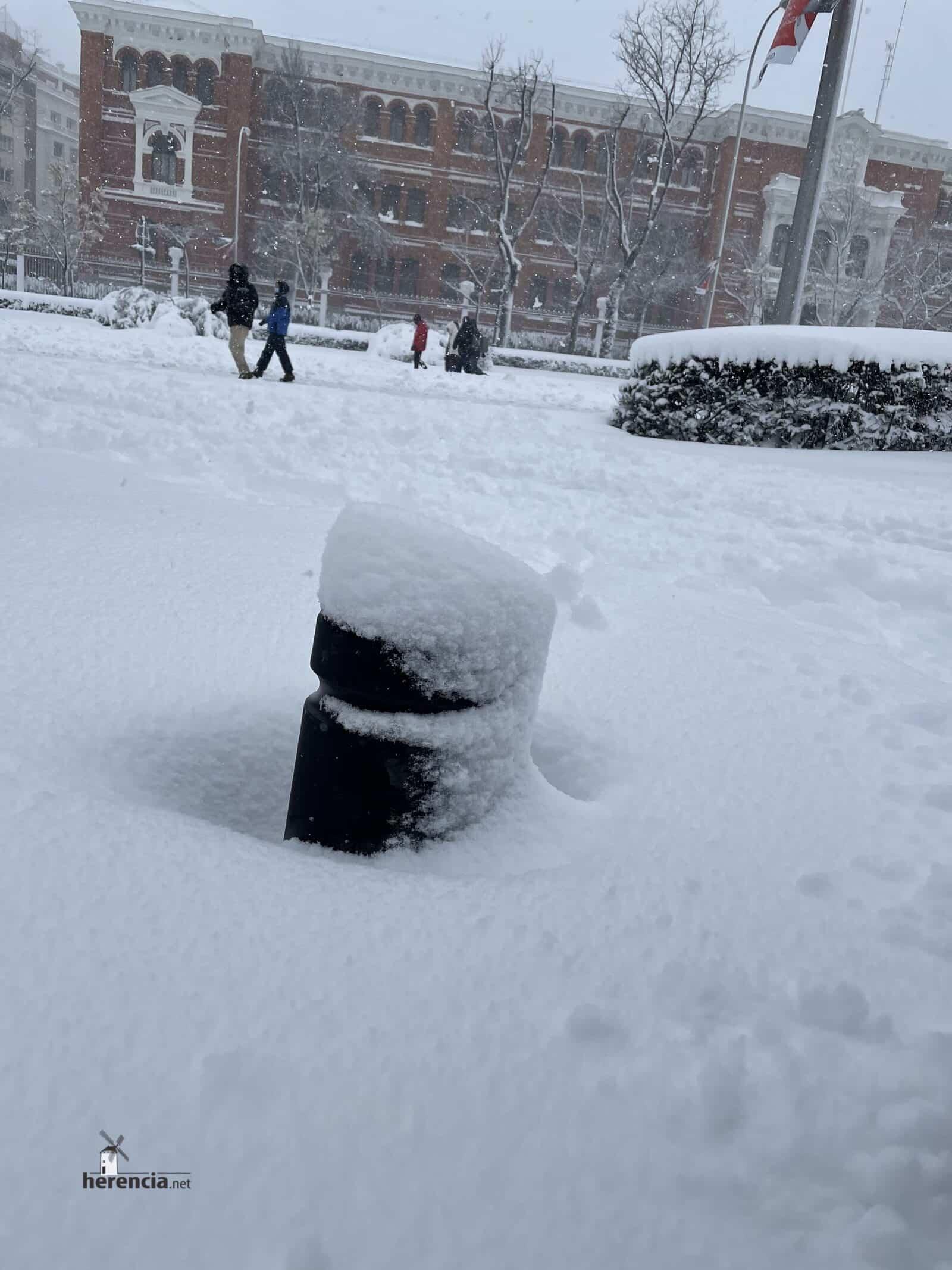 Más fotografías de las nieves de 2021 en Herencia 168