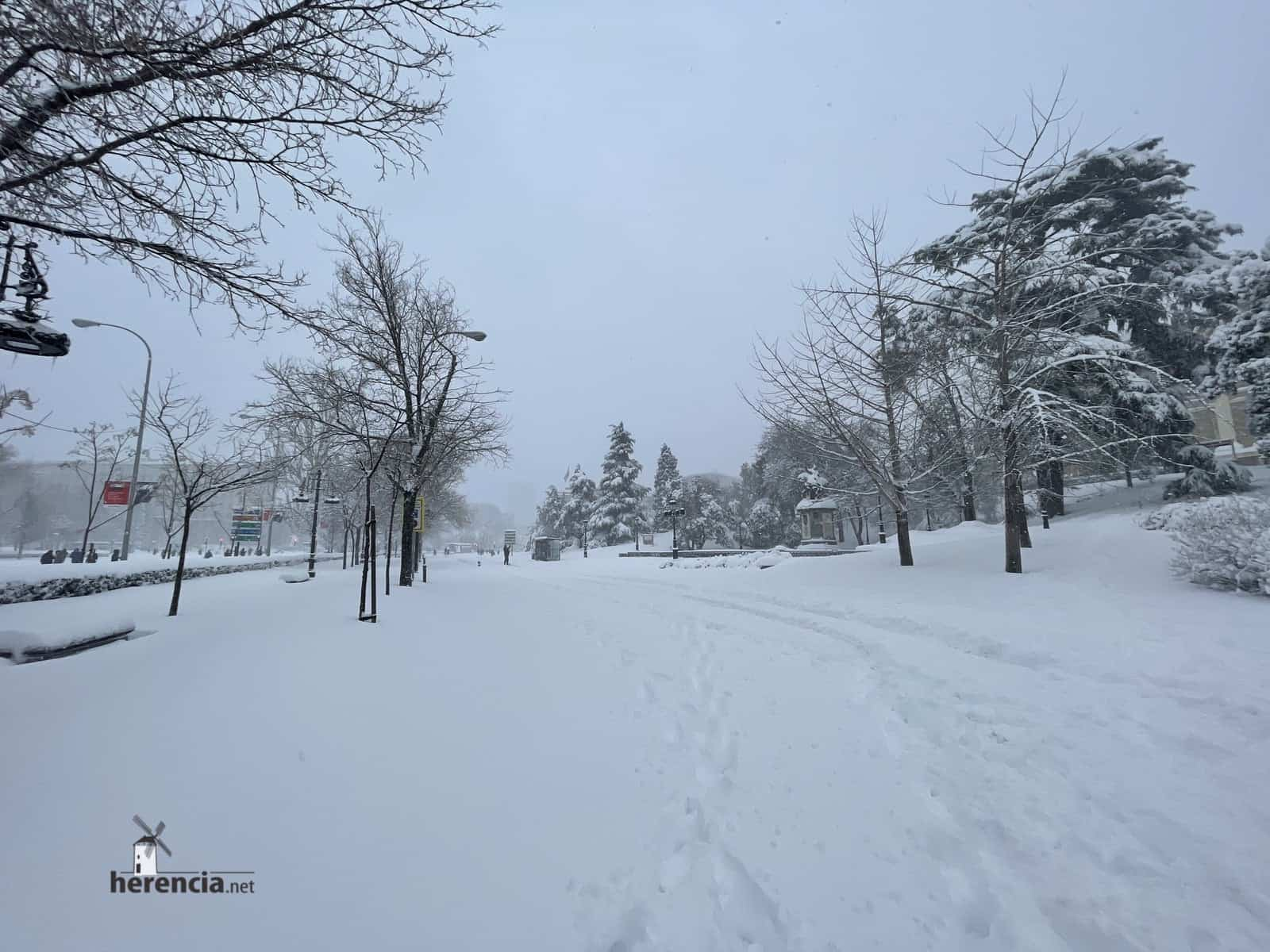 Más fotografías de las nieves de 2021 en Herencia 167