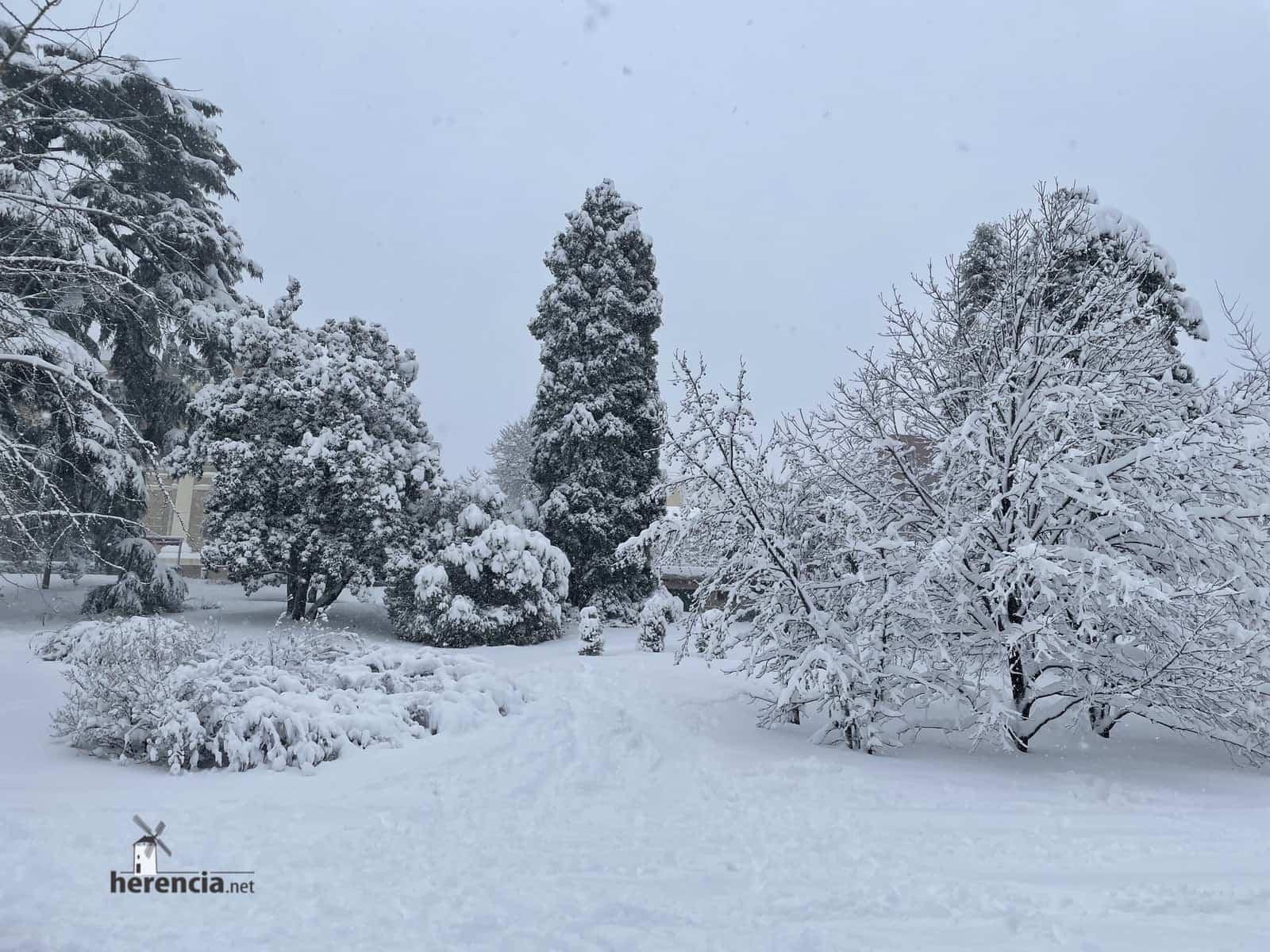 Más fotografías de las nieves de 2021 en Herencia 166
