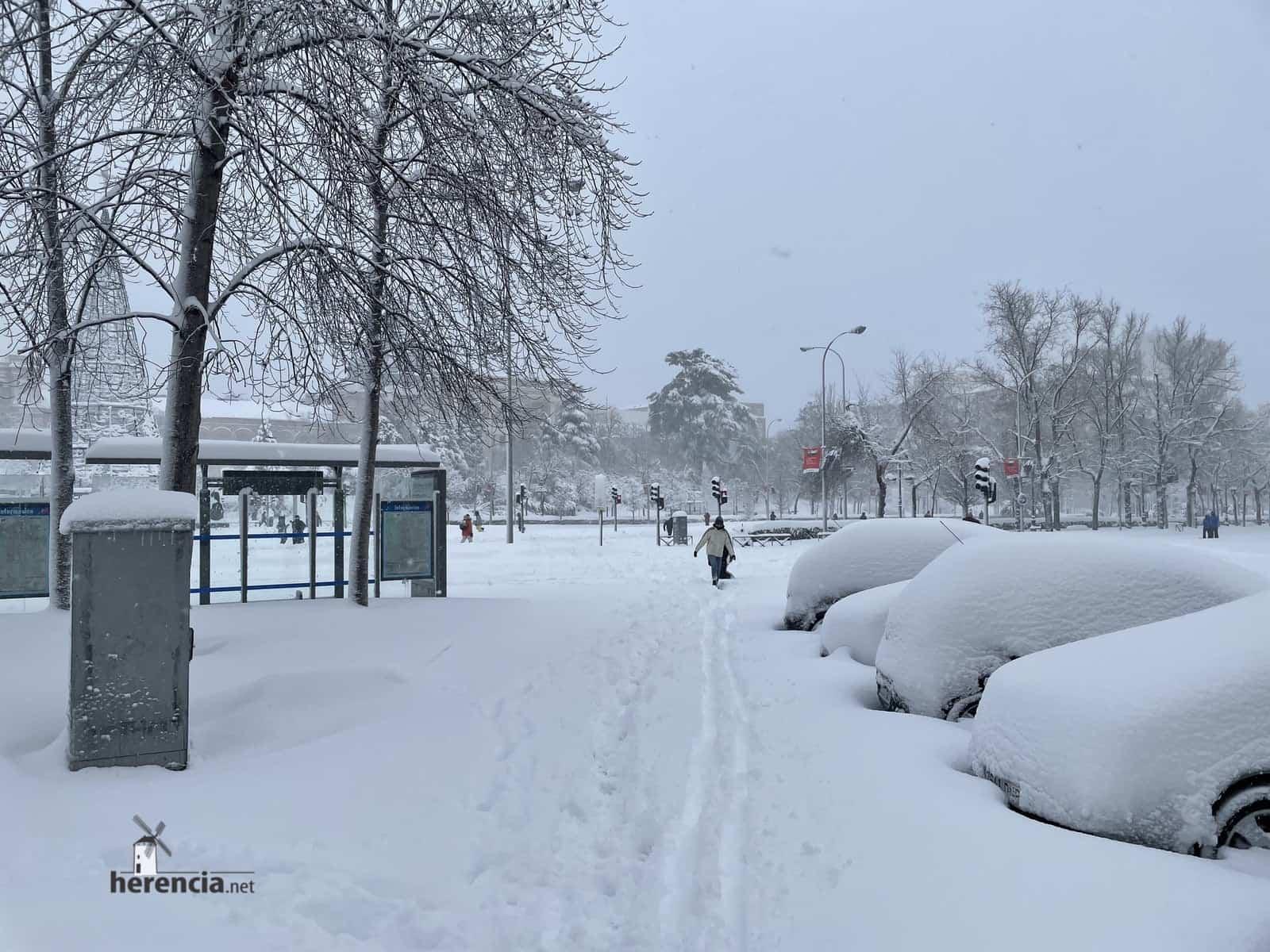 Más fotografías de las nieves de 2021 en Herencia 161