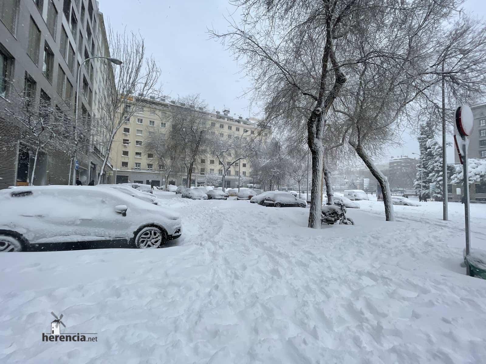 Más fotografías de las nieves de 2021 en Herencia 150