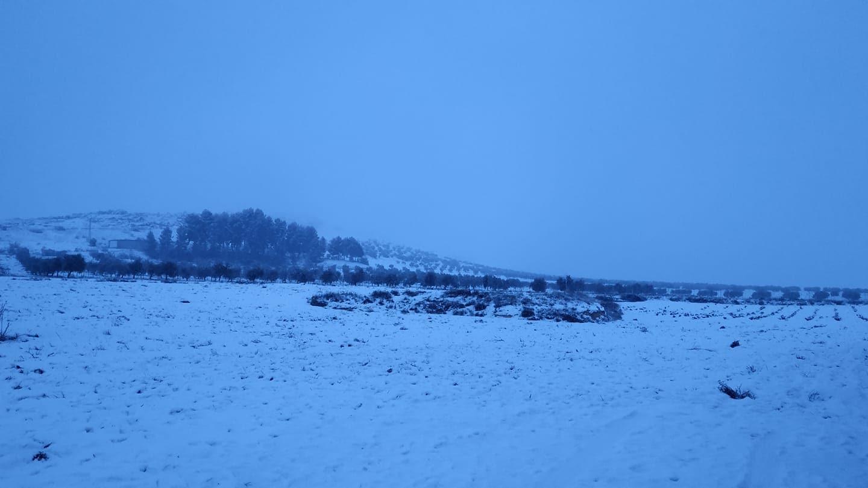 Las nevadas llegan Herencia y a toda Castilla-La Mancha (actualizado) 88