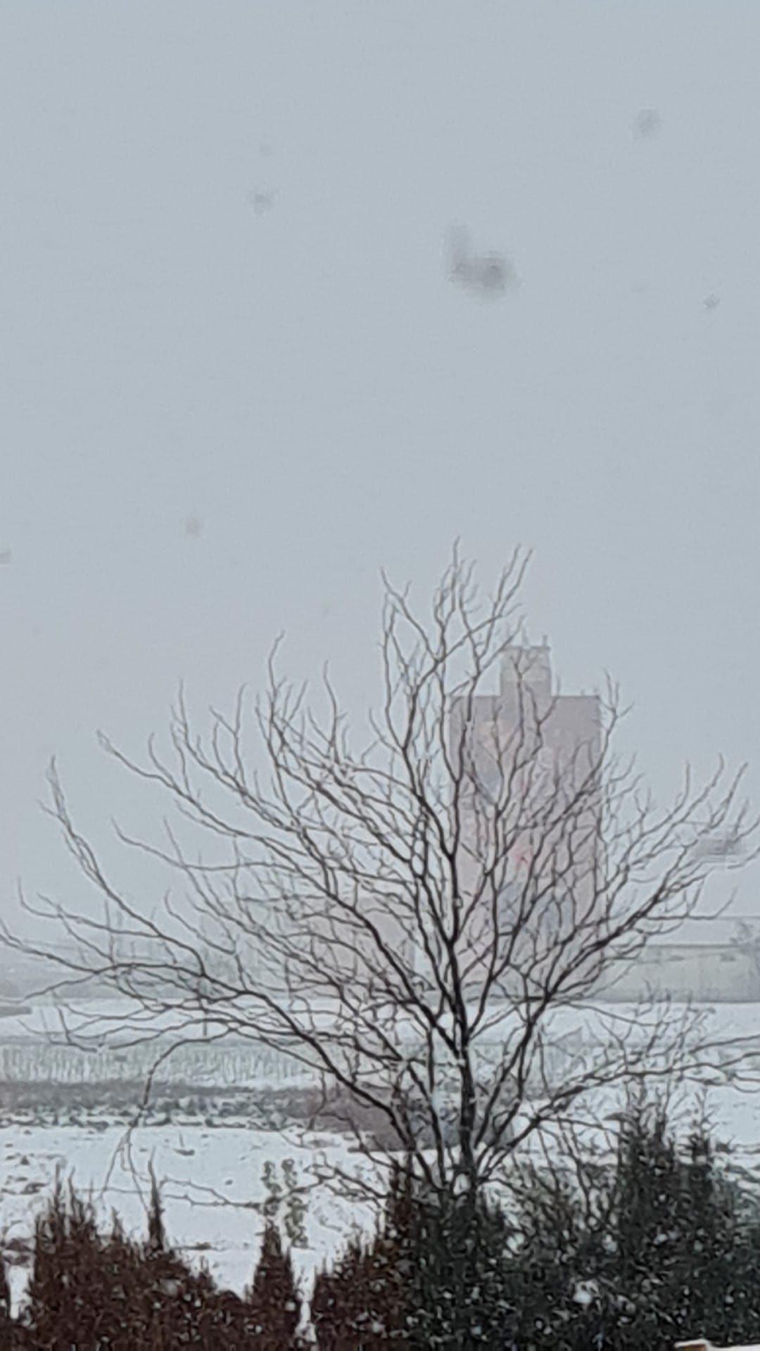 Las nevadas llegan Herencia y a toda Castilla-La Mancha (actualizado) 89