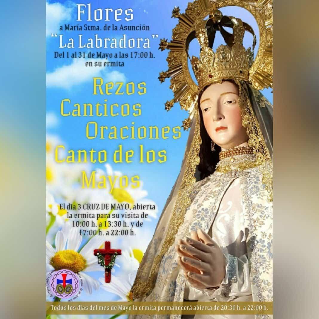 La hermandad de la Asunción prepara múltiples actos para festejar mayo en la Labradora 1